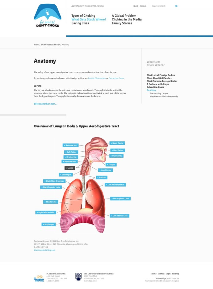 Interactive Anatomy Page